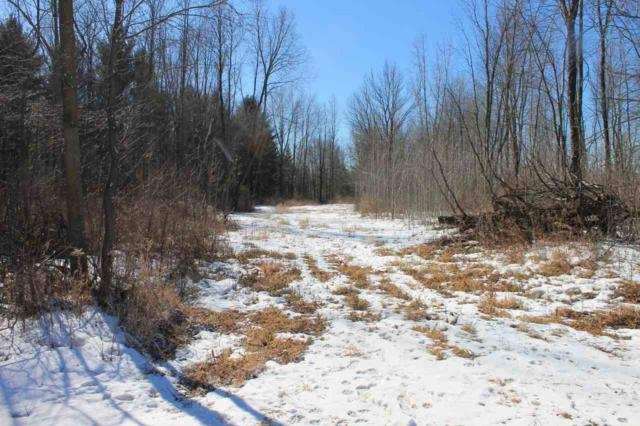 Townline Road, Krakow, WI 54137 (#50178868) :: Dallaire Realty