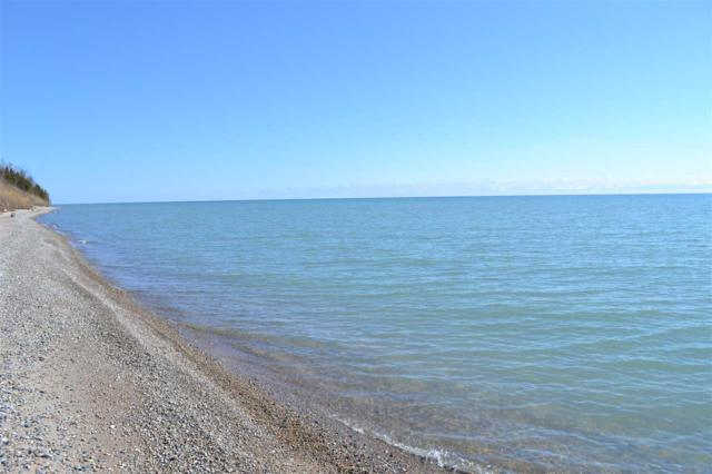 Lakeview Dr, Kewaunee, WI 54216 (#50179034) :: Dallaire Realty