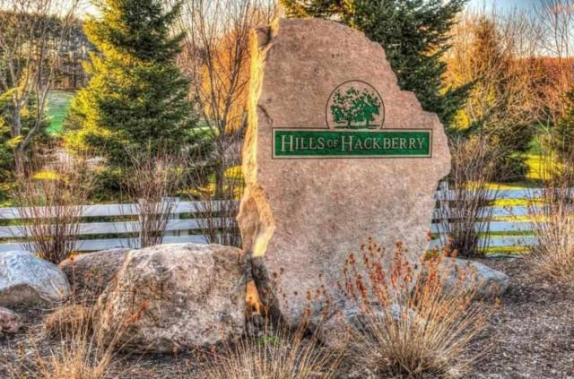 Grandview Road, Hortonville, WI 54944 (#50179674) :: Todd Wiese Homeselling System, Inc.