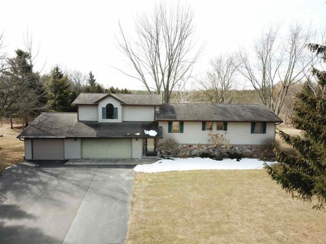 3001 W Shady Lane, Neenah, WI 54956 (#50179763) :: Dallaire Realty