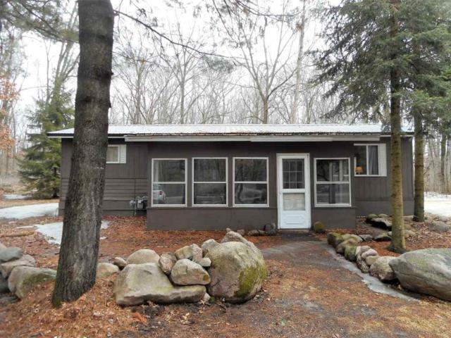 N7162 Amundson Road, Iola, WI 54945 (#50179904) :: Dallaire Realty