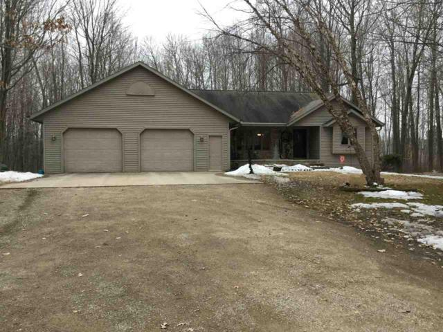 5651 Liegeois Road, Abrams, WI 54101 (#50180035) :: Dallaire Realty