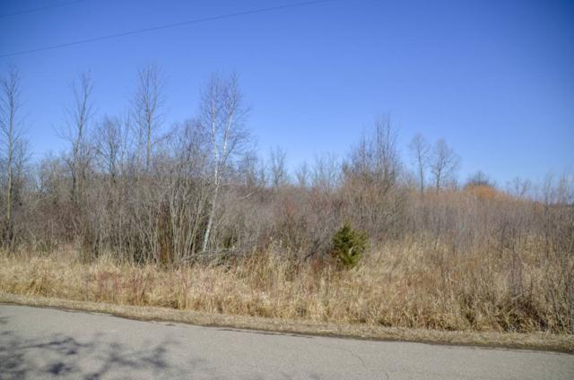 7385 Meadow Brook Road, Lena, WI 54139 (#50180246) :: Dallaire Realty
