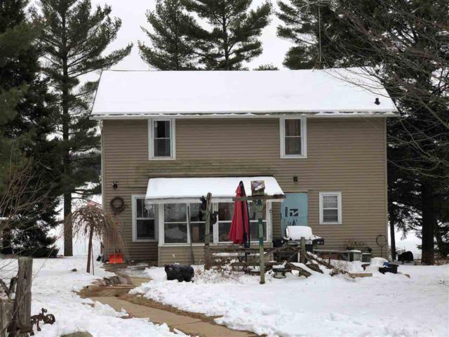 14491 Berry Lake North Shore Road, Gillett, WI 54124 (#50180391) :: Dallaire Realty