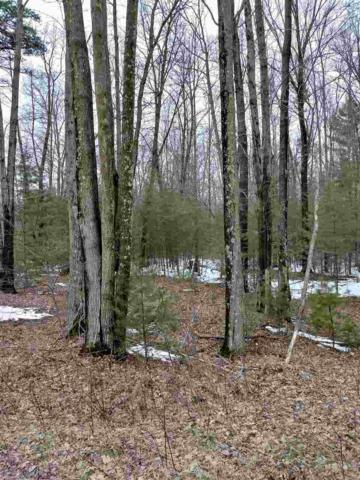 Maple Hill Lane, Marinette, WI 54143 (#50181165) :: Dallaire Realty