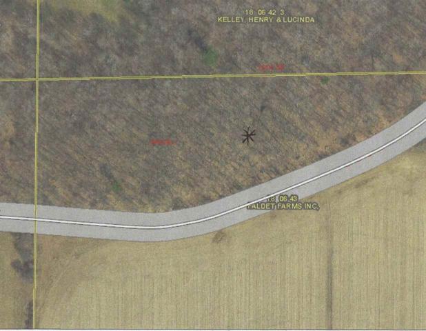 Wesley Road, Iola, WI 54945 (#50181210) :: Symes Realty, LLC