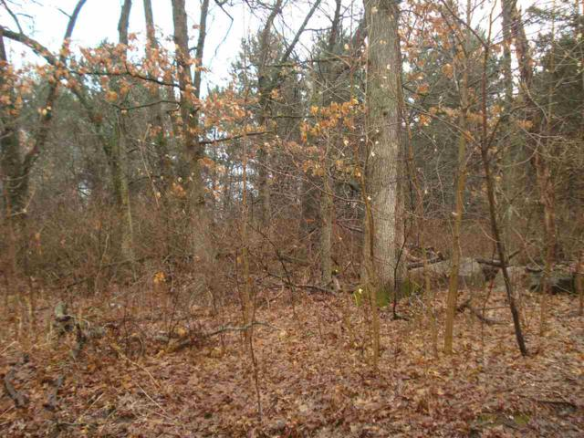 22ND Avenue, Wautoma, WI 54982 (#50181275) :: Dallaire Realty