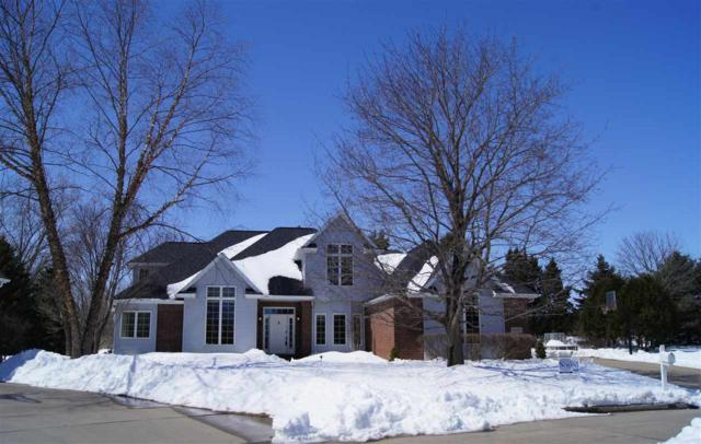 13 Balsam Court, Appleton, WI 54913 (#50181476) :: Dallaire Realty