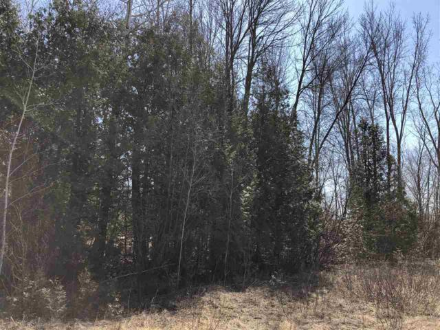 Oak Orchard Road, Abrams, WI 54101 (#50182338) :: Dallaire Realty