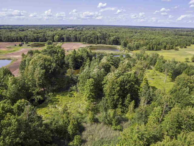 Beaumier Lane, Sobieski, WI 54171 (#50182607) :: Symes Realty, LLC