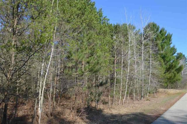 Pine Valley Terrace, Abrams, WI 54101 (#50182829) :: Dallaire Realty