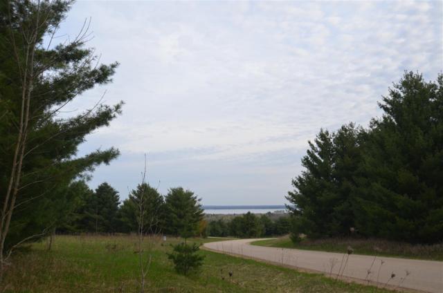 Oak View Drive, Shawano, WI 54166 (#50183100) :: Dallaire Realty