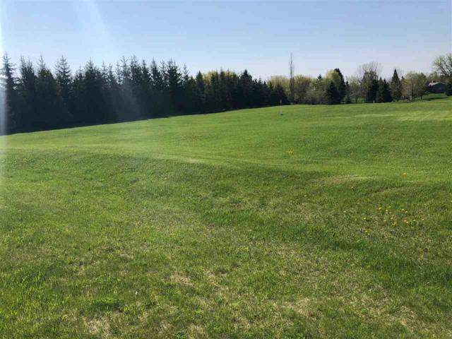 Birchwood Circle, Luxemburg, WI 54217 (#50183275) :: Symes Realty, LLC