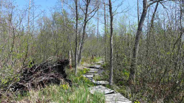 Hansen Road, Ogdensburg, WI 54962 (#50183936) :: Symes Realty, LLC