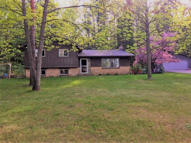 N1739 Jannette Circle, Wautoma, WI 54982 (#50184137) :: Symes Realty, LLC