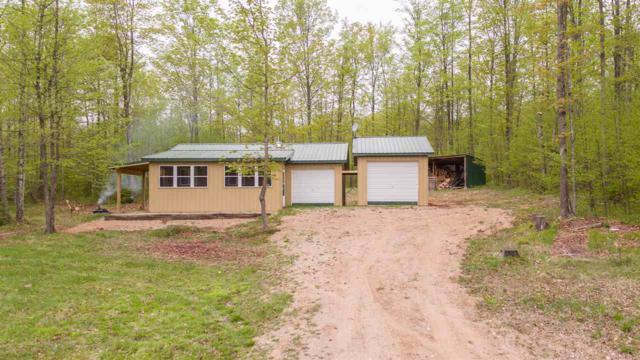 Fox Farm Lane, Hermansville, MI 49847 (#50184277) :: Symes Realty, LLC