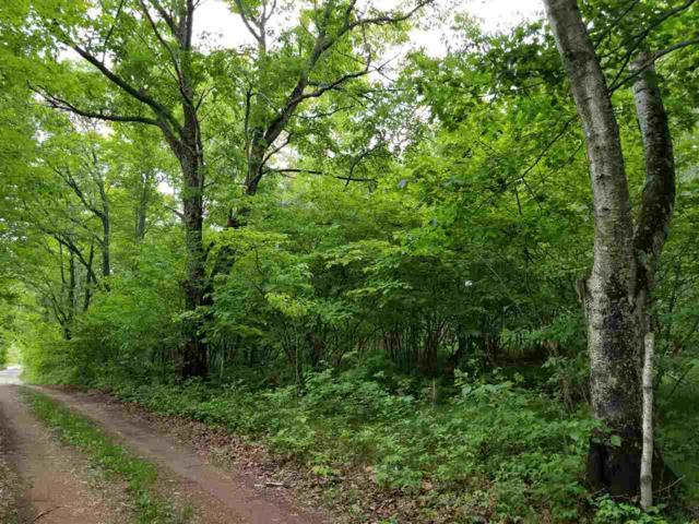 Smith Creek, Crivitz, WI 54114 (#50184627) :: Symes Realty, LLC