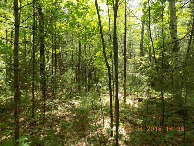 Kraft Lane, Mountain, WI 54149 (#50184912) :: Symes Realty, LLC