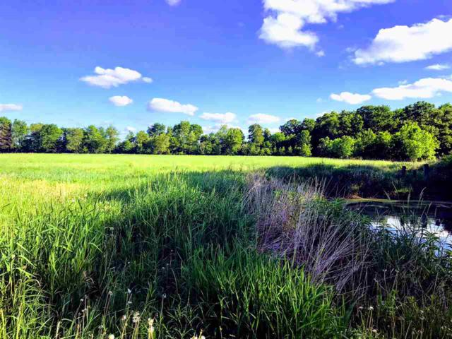Hwy 73, Plainfield, WI 54966 (#50184991) :: Symes Realty, LLC