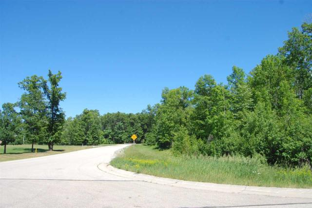 Badger Court, Oconto, WI 54153 (#50185375) :: Symes Realty, LLC