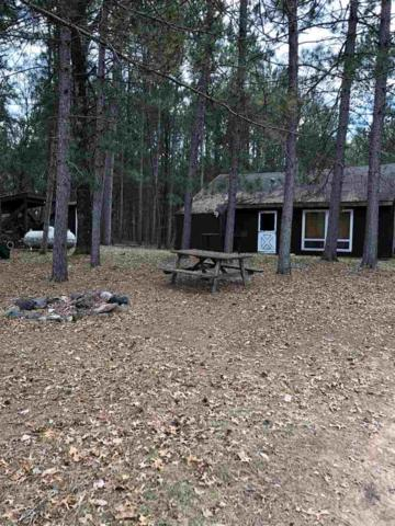 N12460 Camp 10 Road, Silver Cliff, WI 54104 (#50185411) :: Dallaire Realty