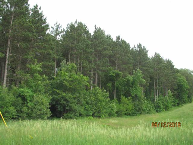 Hwy Z, Wautoma, WI 54982 (#50185431) :: Dallaire Realty