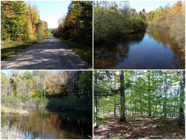 Poachers Run Road, Athelstane, WI 54104 (#50185433) :: Symes Realty, LLC