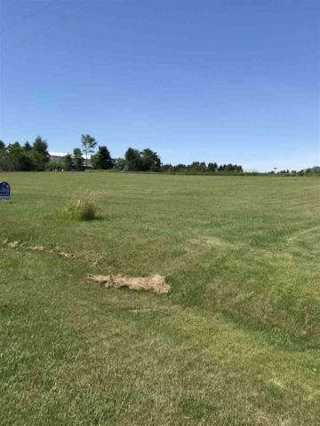 713 Lakshore Drive, Kewaunee, WI 54216 (#50186888) :: Dallaire Realty