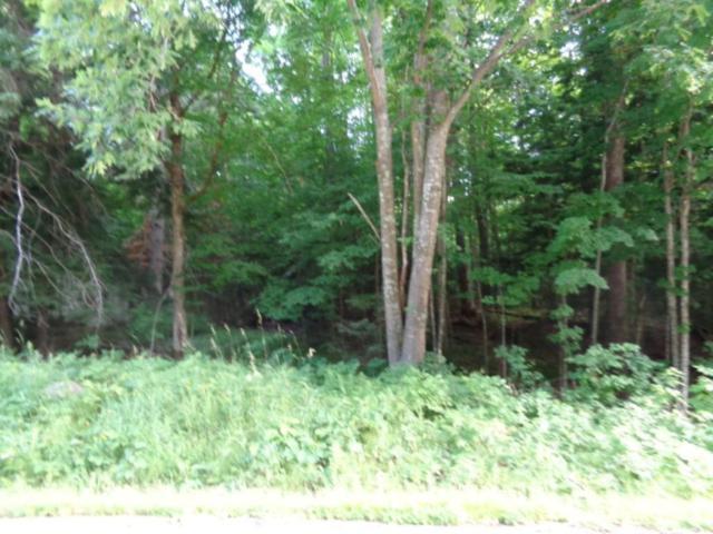 4111 N Hwy M, White Lake, WI 54491 (#50187234) :: Todd Wiese Homeselling System, Inc.