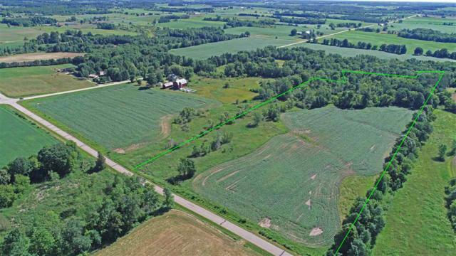 White Clover Road, Manawa, WI 54949 (#50187292) :: Dallaire Realty