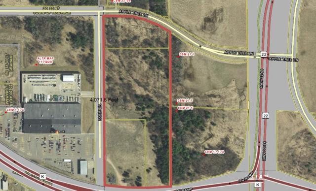 2541 N Farm Drive Street, Waupaca, WI 54981 (#50187531) :: Todd Wiese Homeselling System, Inc.