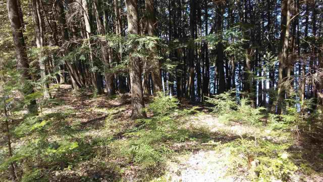 Lake Lane, White Lake, WI 54491 (#50187809) :: Dallaire Realty