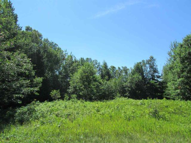 Redwood Lane, Shawano, WI 54166 (#50188140) :: Dallaire Realty