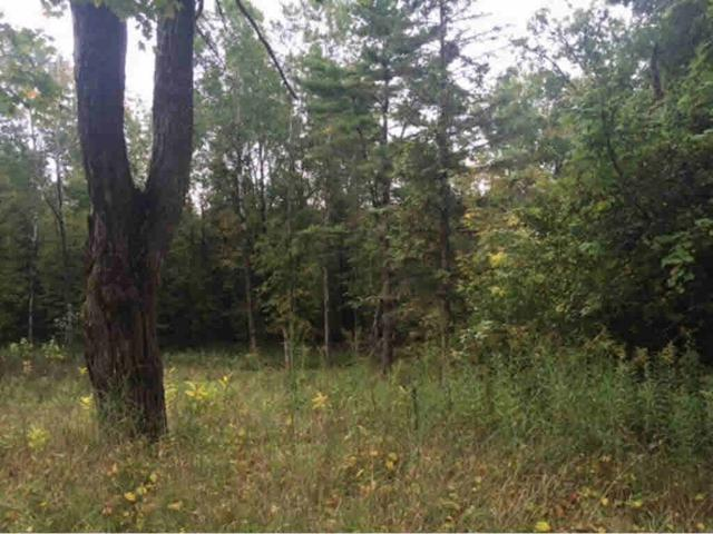 N7655 S-4 Lane, Stephenson, MI 49887 (#50188251) :: Symes Realty, LLC