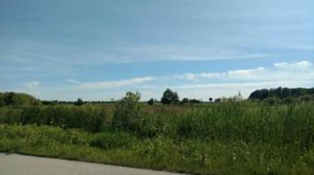 Foxwoods Lane, Abrams, WI 54101 (#50188371) :: Dallaire Realty