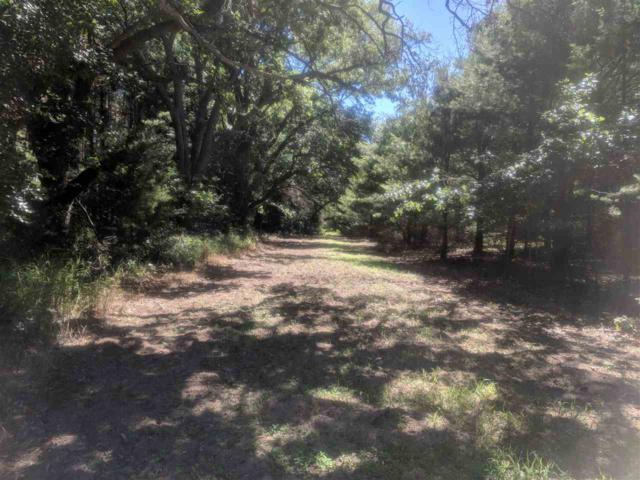 Buttercup Avenue, Wautoma, WI 54982 (#50188698) :: Dallaire Realty