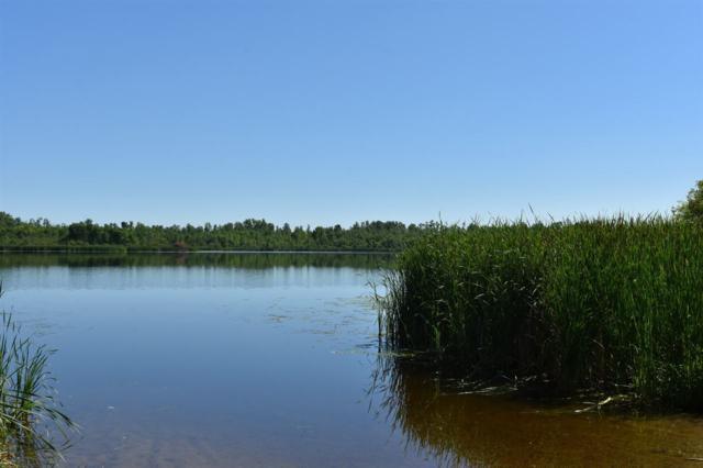 N Porcupine Lake Road, Lena, WI 54139 (#50188748) :: Symes Realty, LLC