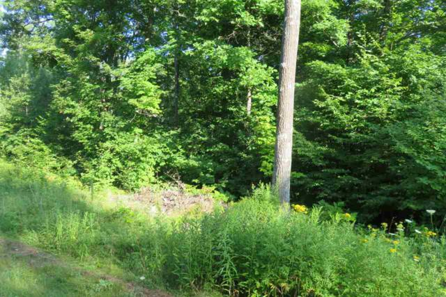 Campfire Run, Townsend, WI 54175 (#50188921) :: Todd Wiese Homeselling System, Inc.