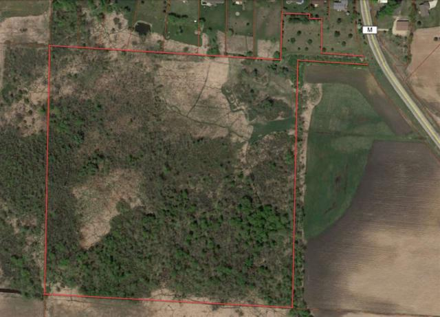 Hwy M, Hortonville, WI 54944 (#50188931) :: Todd Wiese Homeselling System, Inc.