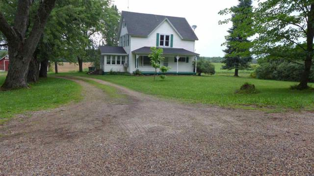 E1438 Nelson Road, Iola, WI 54945 (#50189175) :: Dallaire Realty