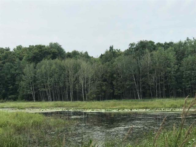 Hwy C, Silver Cliff, WI 54104 (#50189182) :: Dallaire Realty