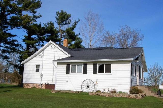 E4999 Butternut Ridge Road, Weyauwega, WI 54983 (#50189237) :: Dallaire Realty