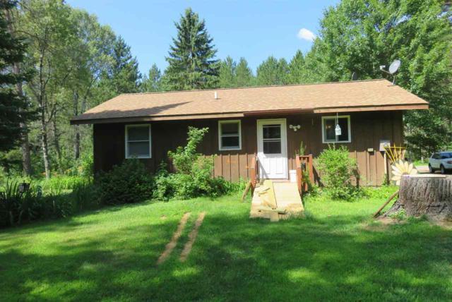 18804 Dumman Lane, Lakewood, WI 54138 (#50189308) :: Symes Realty, LLC
