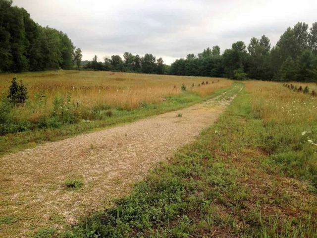 Mayflower Road, Shiocton, WI 54170 (#50189353) :: Dallaire Realty