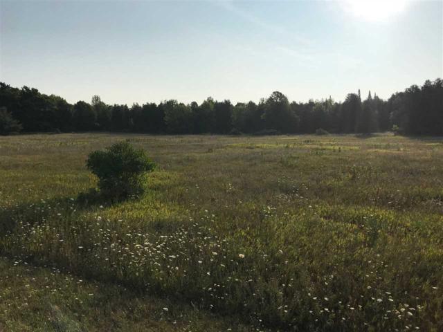 Larson Road, Sturgeon Bay, WI 54235 (#50189440) :: Dallaire Realty