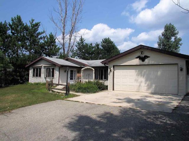 N170 E Cedar Springs Drive, Neshkoro, WI 54960 (#50189554) :: Symes Realty, LLC