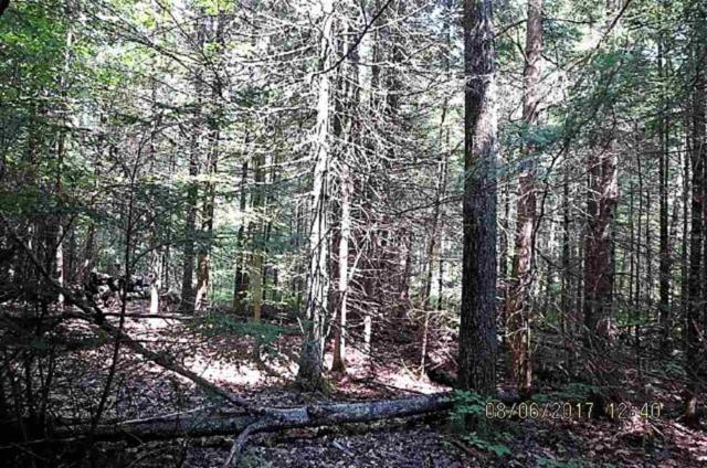 Y Camp Road, Suring, WI 54174 (#50189657) :: Dallaire Realty
