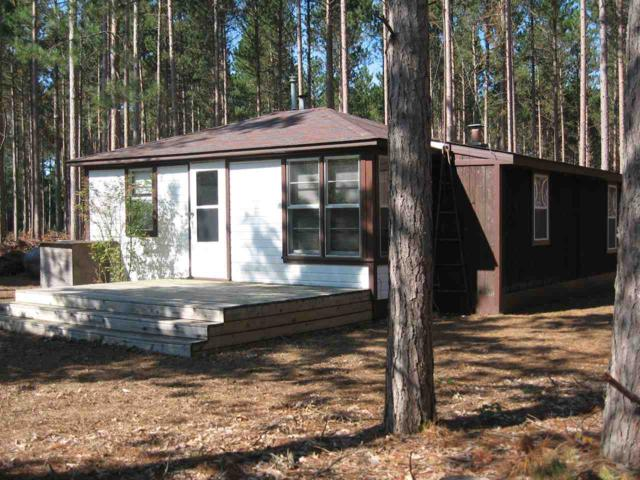 N6037 24TH Avenue, Wild Rose, WI 54984 (#50190248) :: Symes Realty, LLC
