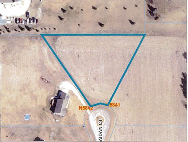 Aidan Court, Rosendale, WI 54974 (#50190401) :: Symes Realty, LLC
