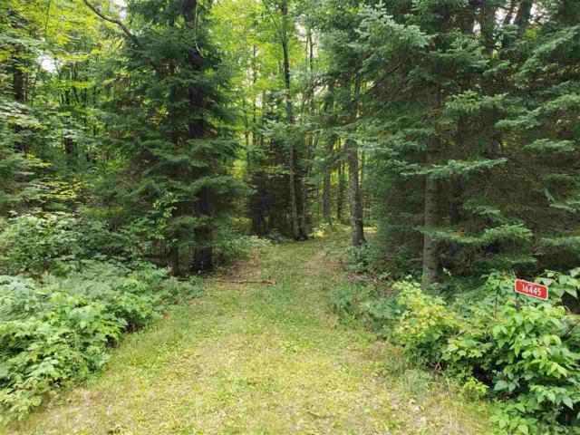 16445 Star Lake Road, Mountain, WI 54149 (#50190492) :: Symes Realty, LLC